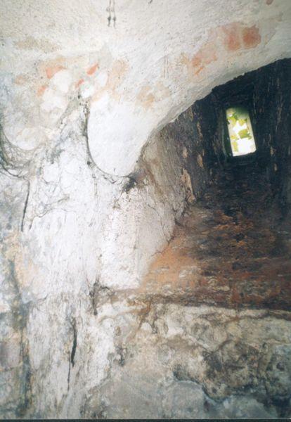 Agonia Pałacu Gorzanowskiego,  Autor: R. Duma, 04.08.2004r.