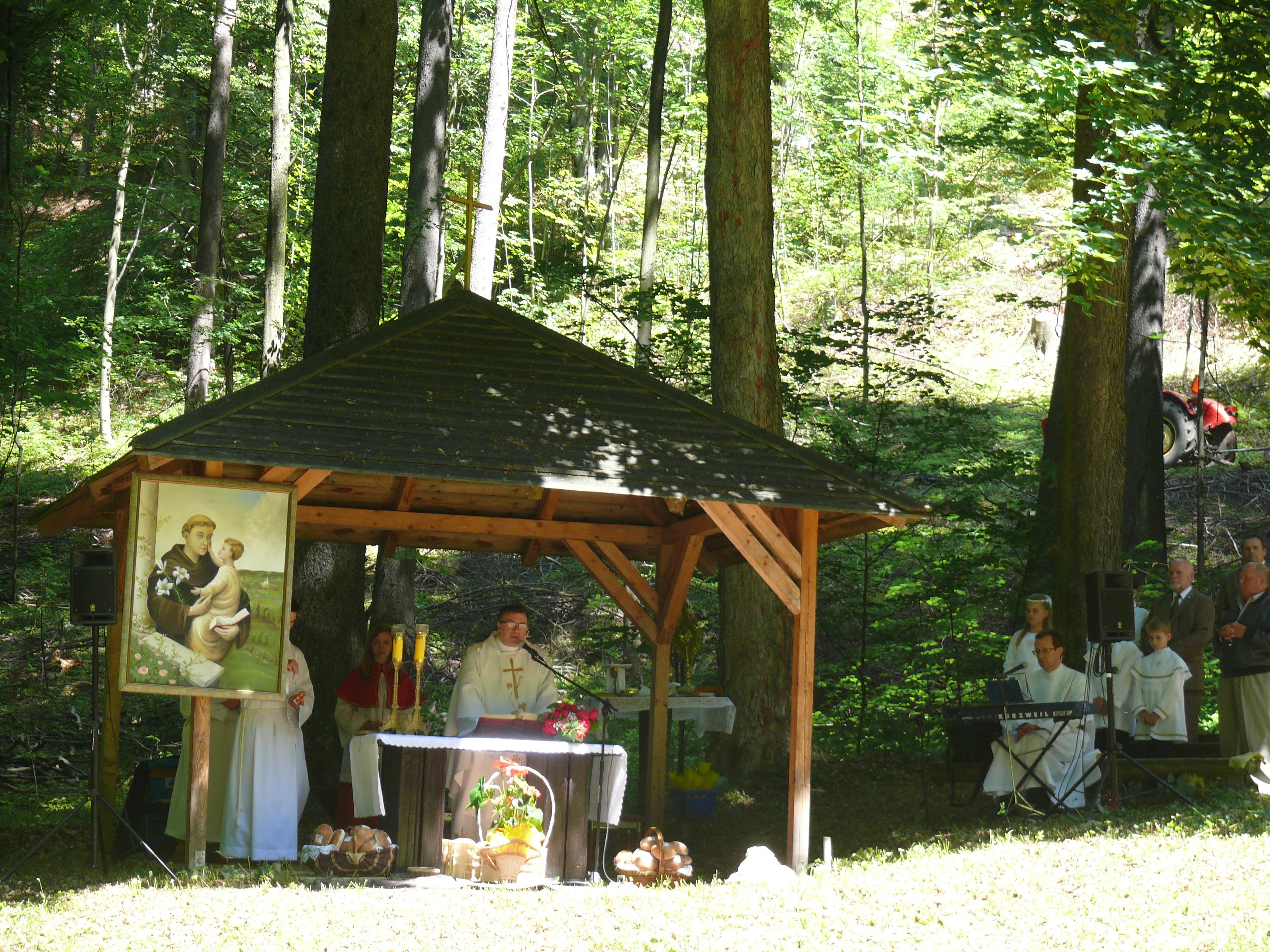 Odpust św. Antoniego Padewskiego, Msza św. Odpustowa, Autor: R. Bernacki, 15.06.2014r.
