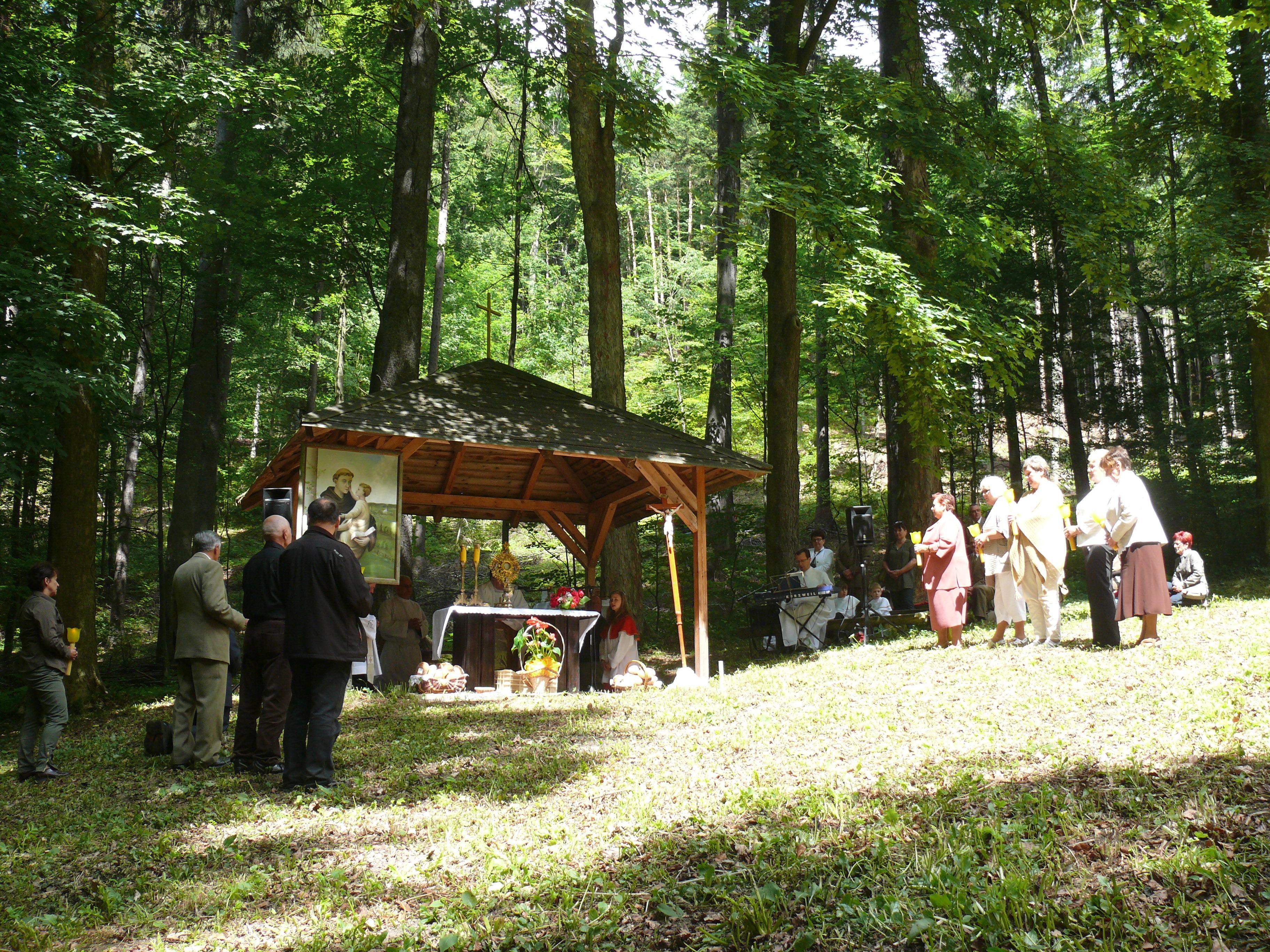 Odpust św. Antoniego Padewskiego, Autor: R. Bernacki, 15.06.2014r.