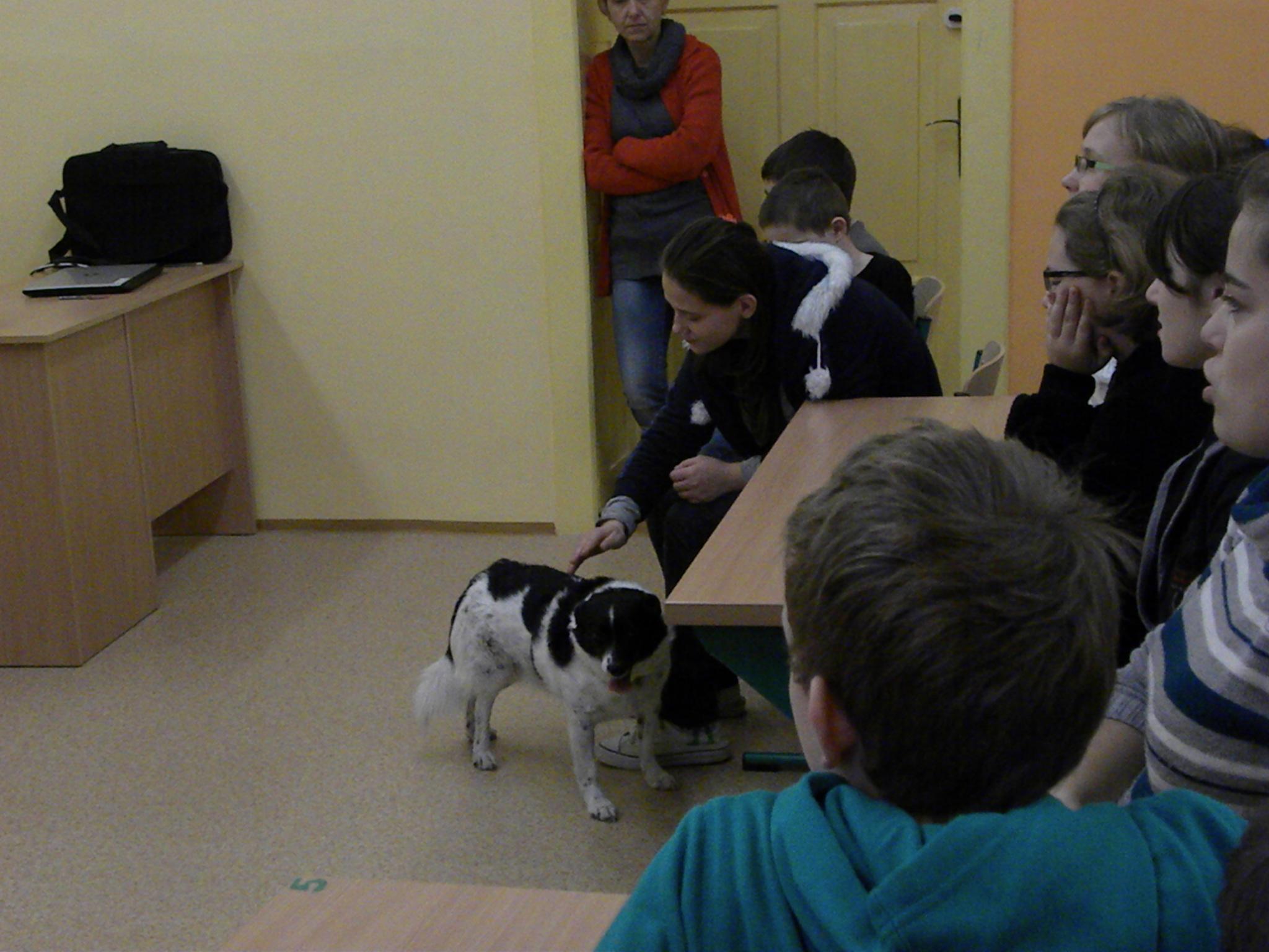 Wizyta Fundacji Pod Psią Gwiazdą, Autor: A. Chabło, 11.12.2014r.