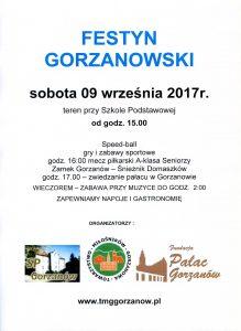Festyn 17348